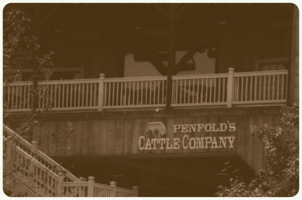 Penfold's Cattle Company